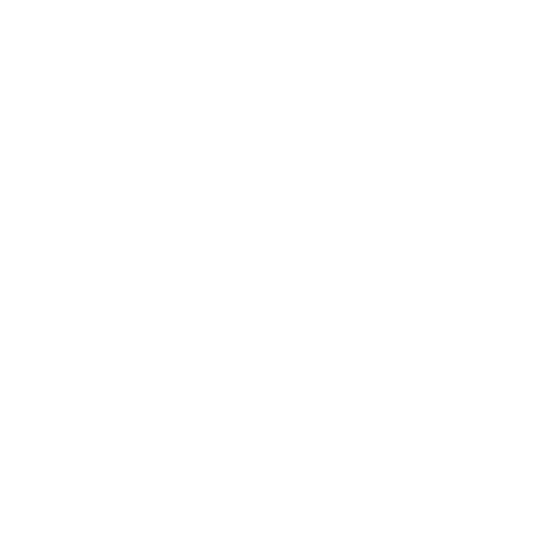 KOREAN MANUFACTURE LICENSE OF SPECIAL EQUIPMENT